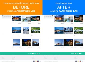 Another comparison image crop and resize before and after using AutoImage Lite