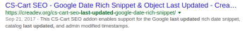 SEO Last Update Google Rich Snippet Example