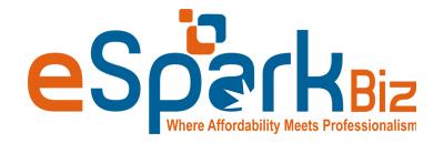 eSparkBiz Technologies Private Limites